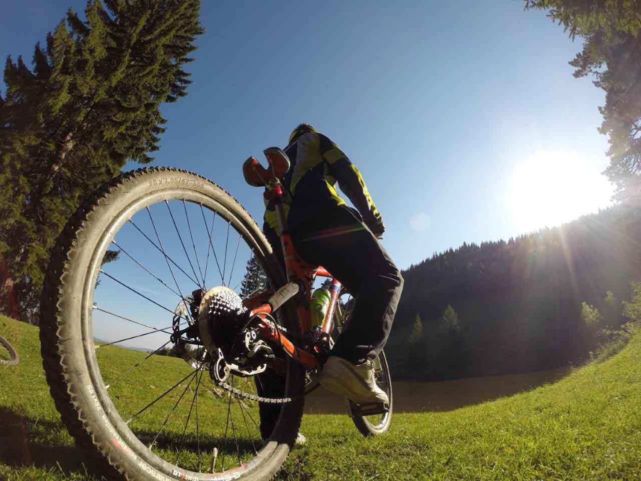 Mountainbike Winterberg Hotel Herrloh
