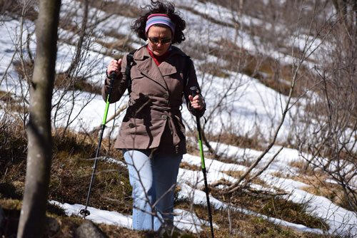 Nordic Walking Omgeving Winterberg