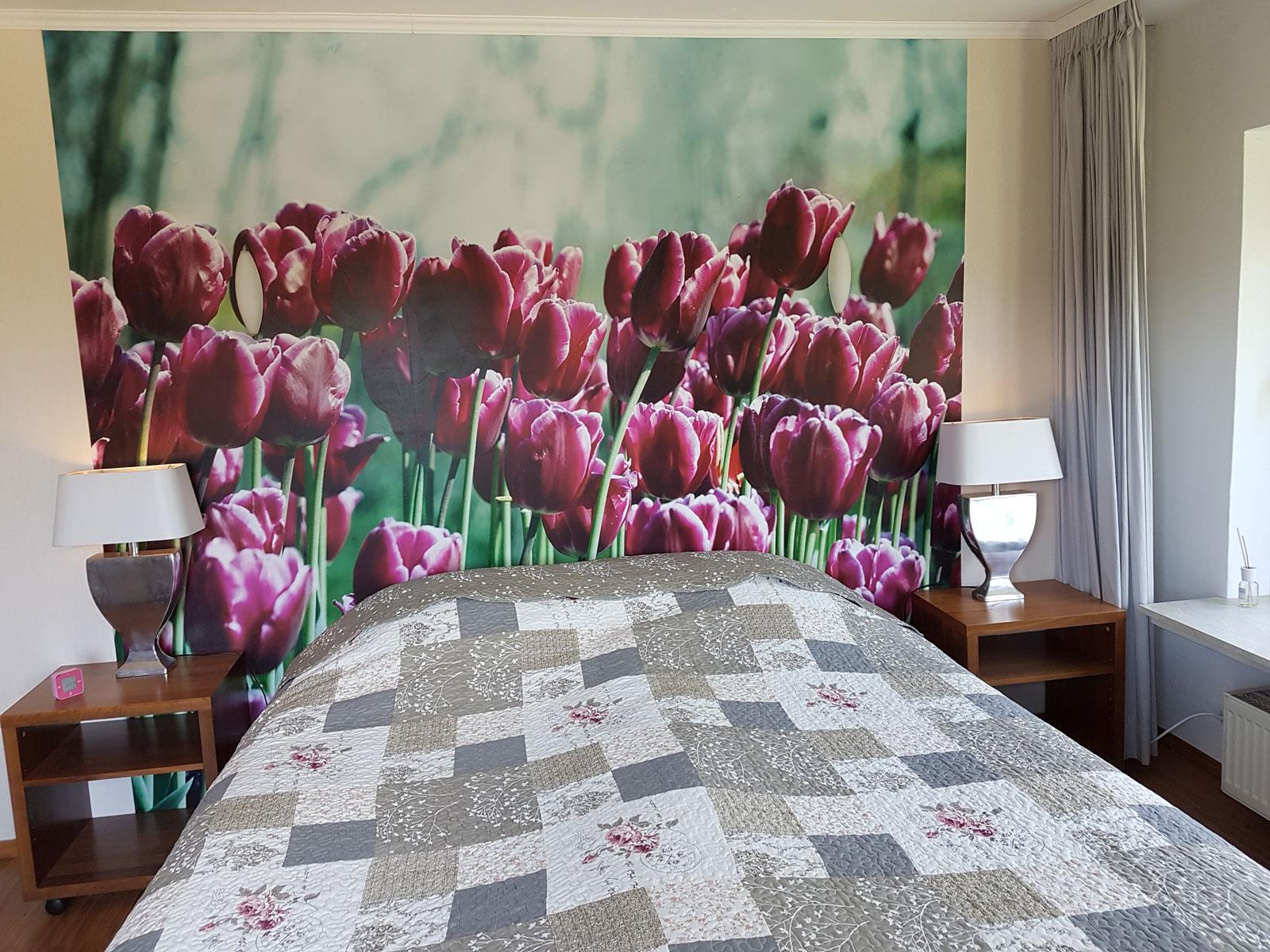 superior room hotel herrloh